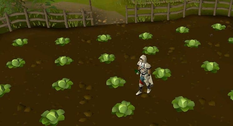 Profitable Level 1-99 OSRS Farming Guide